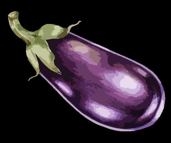 veg_aubergine